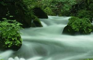 japanese_river2